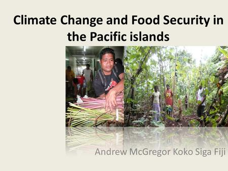 Climate Change and Food Security in the Pacific islands Andrew McGregor Koko Siga Fiji.