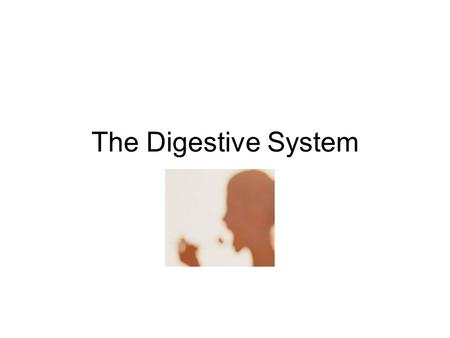 The Digestive System. Diagram of the digestive system.