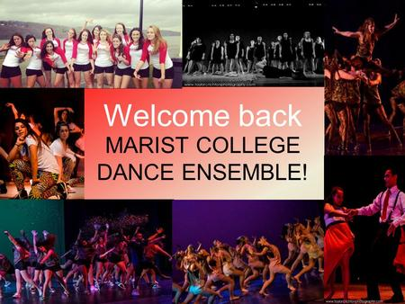 Welcome back MARIST COLLEGE DANCE ENSEMBLE!. When and where is the show? November 23 rd at 4:30pm, November 24 th at 2:oopm Show will be at Poughkeepsie.