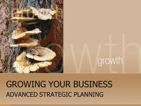 GROWING YOUR BUSINESS ADVANCED STRATEGIC PLANNING.
