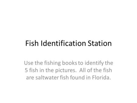 Fish Identification Station Use the fishing books to identify the 5 fish in the pictures. All of the fish are saltwater fish found in Florida.