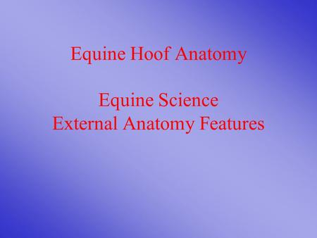 Equine Hoof Anatomy Equine Science External Anatomy Features