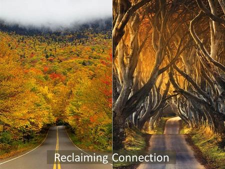 Reclaiming Connection. An experiment on connection Can our positive thoughts/feelings influence the environment a quantum level (and perhaps be a force.