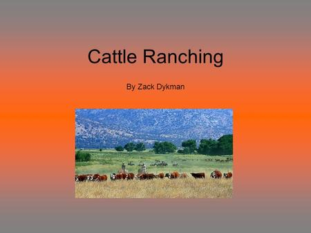 Cattle Ranching By Zack Dykman. Cattle ranching was growing greatly from 1860 – 1910. Cattle ranch was very hard work. This job is very time-consuming.