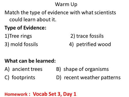Warm Up Match the type of evidence with what scientists could learn about it. Type of Evidence: 1)Tree rings 2) trace fossils 3) mold fossils 4) petrified.