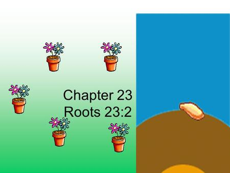 Chapter 23 Roots 23:2. 1.Roots – anchors plant into the ground and transports materials to the plants body A.2 types 1.Tap – primary root that grows long.