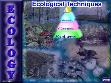© SSER Ltd.. Ecological Techniques A variety of universal practical approaches exist for investigating the biotic and abiotic components of ecosystems.