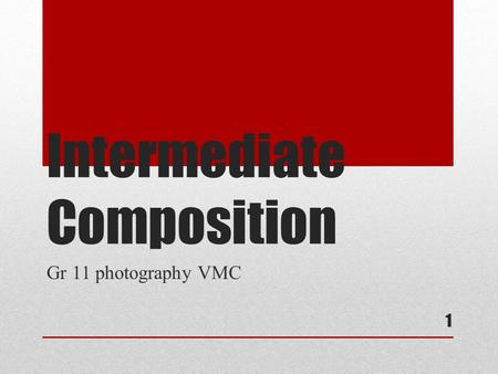 Intermediate Composition Gr 11 photography VMC 1.