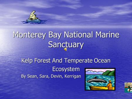 Monterey Bay National Marine Sanctuary Kelp Forest And Temperate Ocean Ecosystem By Sean, Sara, Devin, Kerrigan.