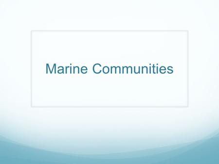Marine Communities. Basics Community: Organisms in a specific group of interacting producers, consumers, and recyclers that share a common living space.