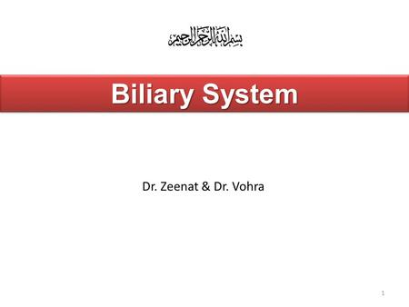 1 Dr. Zeenat & Dr. Vohra Biliary System. At the end of the lecture, the student should be able to describe the: Location, surface anatomy, parts, relations.