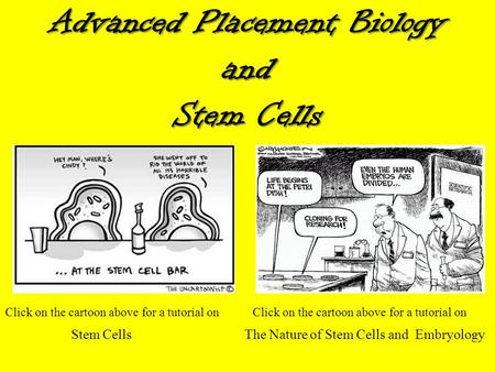 Advanced Placement Biology and Stem Cells Click on the cartoon above for a tutorial on Stem Cells The Nature of Stem Cells and Embryology.