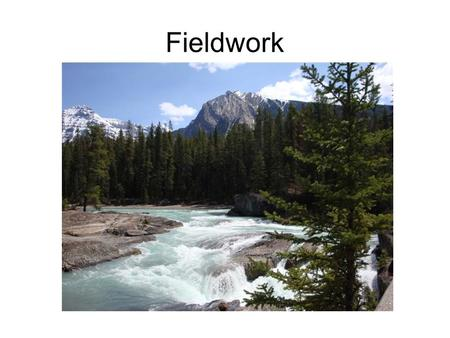 Fieldwork. Measuring populations - sampling Usually use transect or quadrat to sample Count number of organisms per sample area, then calculate numbers.