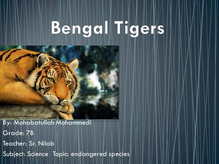 By: Mohabatullah Mohammedi Grade: 7B Teacher: Sr. Nilab Subject: Science Topic: endangered species.