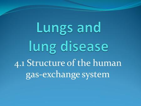 4.1 Structure of the human gas-exchange system