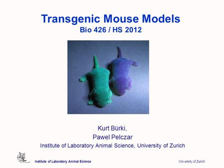 Institute of Laboratory Animal Science University of Zurich Transgenic Mouse Models Bio 426 / HS 2012 Kurt Bürki, Pawel Pelczar Institute of Laboratory.