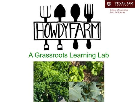 A Grassroots Learning Lab College of Agriculture And Life Sciences.