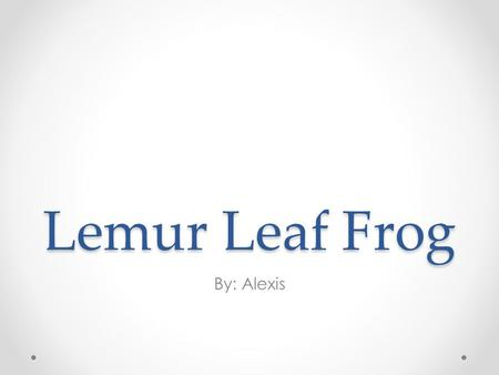 Lemur Leaf Frog By: Alexis. Habitat and Color The color is green with brown spots, silver eyes, blue nostrils, unlikely from other frogs this one has.