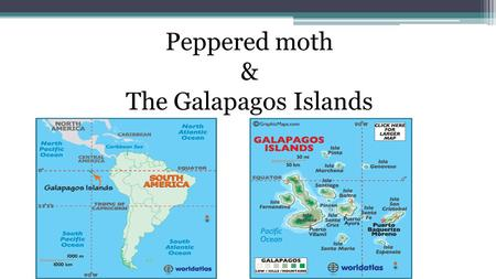 Peppered moth & The Galapagos Islands.