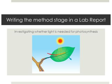 Writing the method stage in a Lab Report Investigating whether light is needed for photosynthesis.