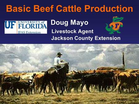 Basic Beef Cattle Production Doug Mayo Livestock Agent Jackson County Extension.