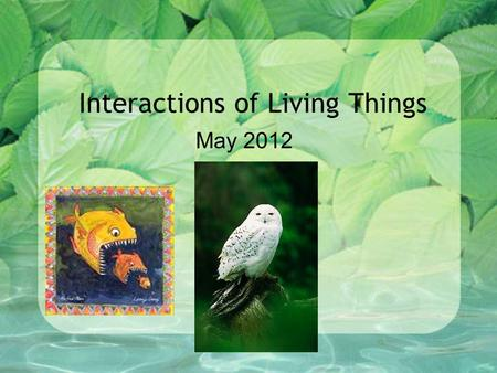 Interactions of Living Things May 2012. Living or Not Living? Biotic – any living thing in an ecosystem –Examples: (list our class examples) Abiotic –
