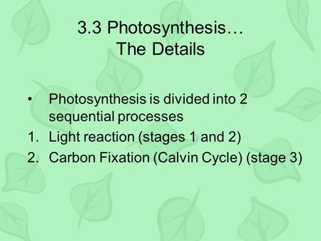 3.3 Photosynthesis… The Details Photosynthesis is divided into 2 sequential processes 1.Light reaction (stages 1 and 2) 2.Carbon Fixation (Calvin Cycle)