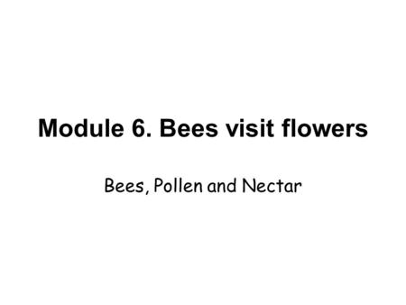 Module 6. Bees visit flowers Bees, Pollen and Nectar.