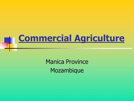 Commercial Agriculture Manica Province Mozambique.