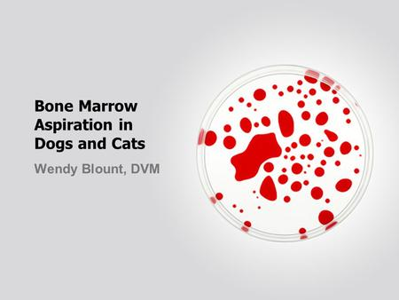 Bone Marrow Aspiration in Dogs and Cats Wendy Blount, DVM.