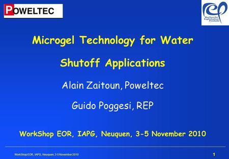 Microgel Technology for Water Shutoff Applications Alain Zaitoun, Poweltec Guido Poggesi, REP WorkShop EOR, IAPG, Neuquen, 3-5 November 2010.