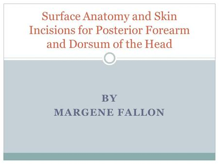 BY MARGENE FALLON Surface Anatomy and Skin Incisions for Posterior Forearm and Dorsum of the Head.