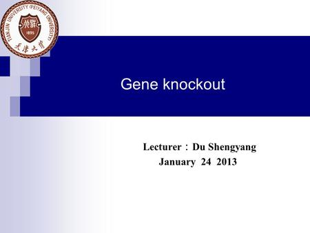 Gene knockout Lecturer : Du Shengyang January 24 2013.