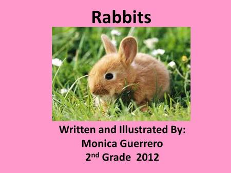 Rabbits Written and Illustrated By: Monica Guerrero 2 nd Grade 2012.