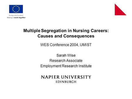 Multiple Segregation in Nursing Careers: Causes and Consequences WES Conference 2004, UMIST Sarah Wise Research Associate Employment Research Institute.