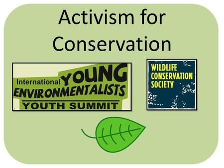 Activism for Conservation. What is Activism? Word Cloud created on Wordle.net.
