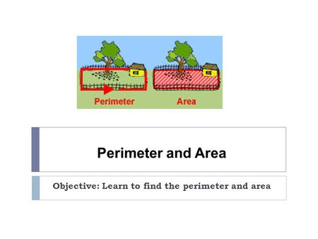 Perimeter and Area Objective: Learn to find the perimeter and area.