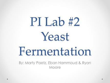 PI Lab #2 Yeast Fermentation By: Marty Paetz, Eban Hammoud & Ryan Moore.