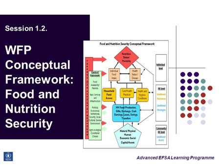 Advanced EFSA Learning Programme Session 1.2. WFP Conceptual Framework: Food and Nutrition Security.