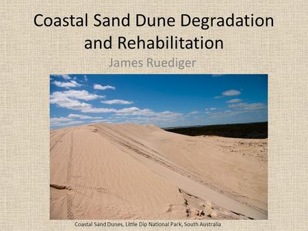 Coastal Sand Dune Degradation and Rehabilitation James Ruediger Coastal Sand Dunes, Little Dip National Park, South Australia.
