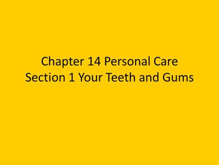 Chapter 14 Personal Care Section 1 Your Teeth and Gums.