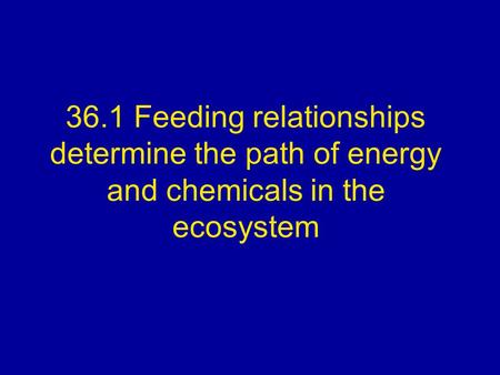 36.1 Feeding relationships determine the path of energy and chemicals in the ecosystem.