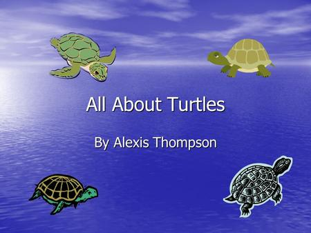 All About Turtles By Alexis Thompson. Turtles Turtles And Their Eggs When mother turtles have their eggs she covers them in soil so she can go get food.