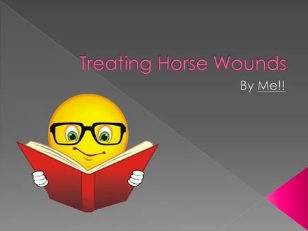  Horse wounds often happen when  Riding  With fences or cross country  Traveling  In a trailer  With other horses, if fighting.