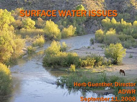 SURFACE WATER ISSUES Herb Guenther, Director ADWR September 11, 2008.