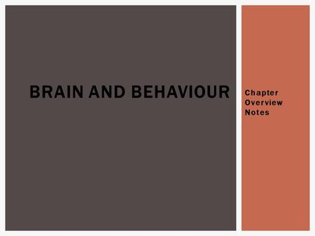 "Chapter Overview Notes BRAIN AND BEHAVIOUR.  1 st : Franz Gall ""phrenology"" the idea that certain areas of the brain control certain functions and behaviours."