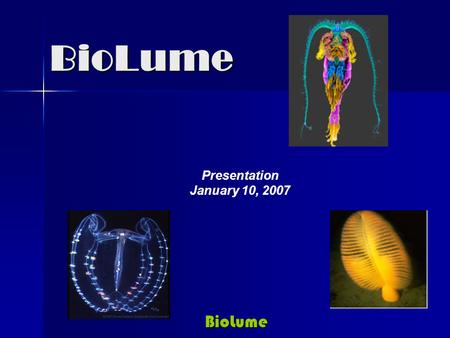 BioLume BioLume Presentation January 10, 2007. BioLume BioLume Mission …..to develop and commercialize a broad library of proprietary bioluminescent proteins.