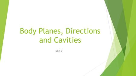 Body Planes, Directions and Cavities