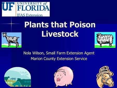 Plants that Poison Livestock Nola Wilson, Small Farm Extension Agent Marion County Extension Service.