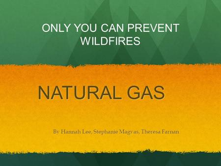 NATURAL GAS By Hannah Lee, Stephanie Magvas, Theresa Farnan ONLY YOU CAN PREVENT WILDFIRES.